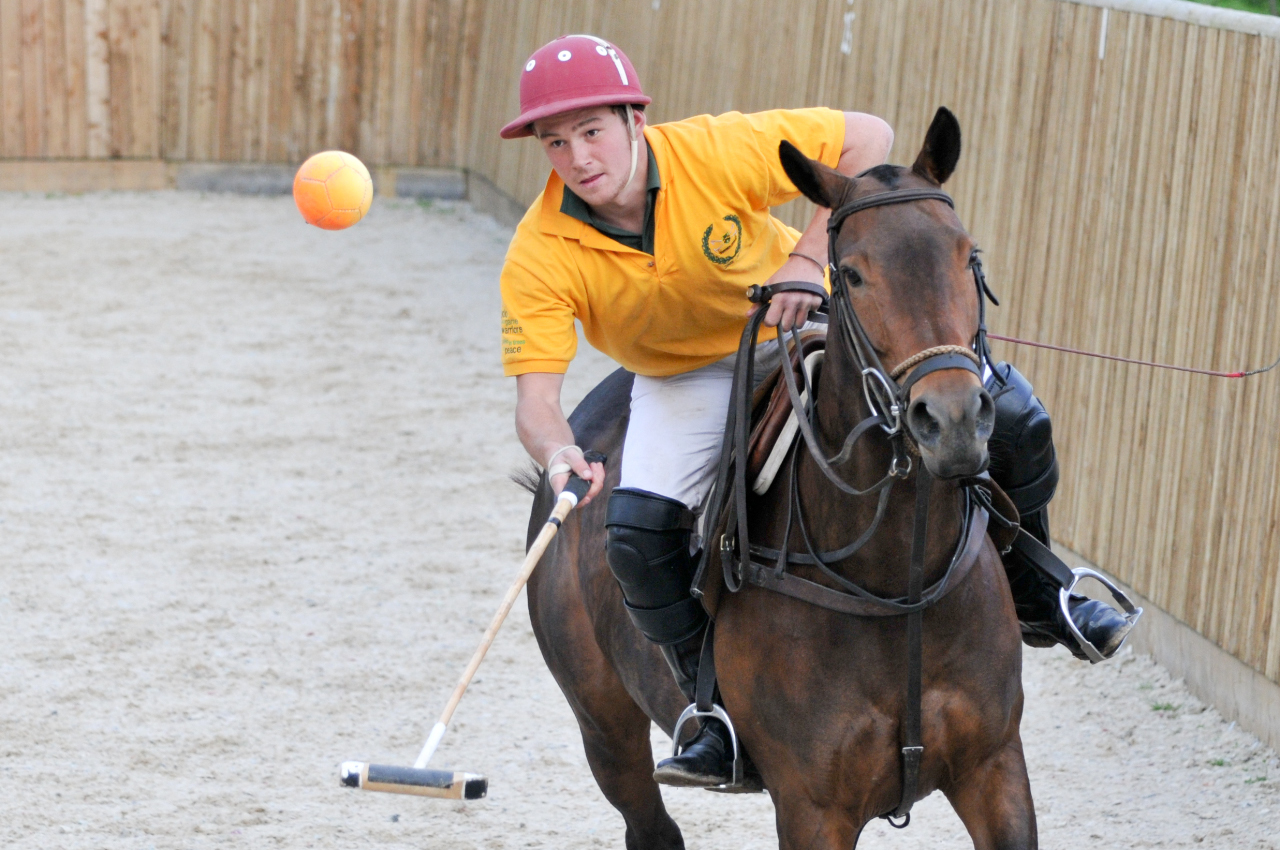 Sussex Polo Club